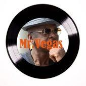 What a Joy by Mr. Vegas