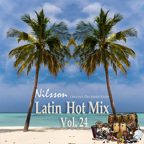 Latin Hot Mix Vol. 24 by Various Artists