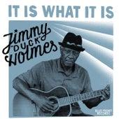 It Is What It Is de Jimmy Duck Holmes
