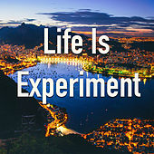 Life Is Experiment de Various Artists