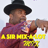 A Sir Mix-A-Lot Mix by Sir Mix-A-Lot