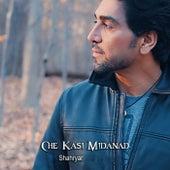 Che Kasi Midanad by Shahryar