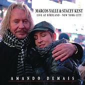 Amando Demais ((Studio Version) [Bonus Track]) by Stacey Kent