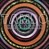 Tambó (Radio Edit) de Cato Anaya