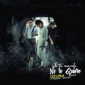 Si No Te Quiere Remix de Ozuna