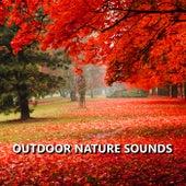 Outdoor Nature Sounds de Sounds Of Nature