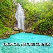 Tropical Nature Sounds de Sounds Of Nature