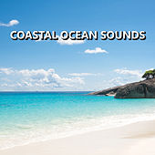 Coastal Ocean Sounds by Ocean Sounds Collection (1)