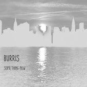 Something New by Burris