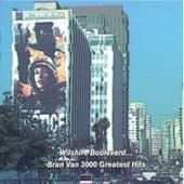 Bran Van 3000 Greatest Hits by Bran Van 3000