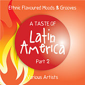 A Taste of Latin America, Pt. 2 (Ethnic Flavoured Moods & Grooves) by Various Artists
