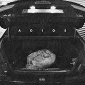 Adios by Gilli