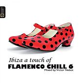 Flamenco Chill 6 by Victor Nebot