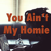 You Ain't My Homie by Various Artists