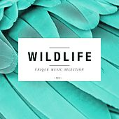 Wildlife - Unique Music Selection, Vol. 10 by Various Artists