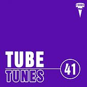 Tube Tunes, Vol.41 by Various Artists