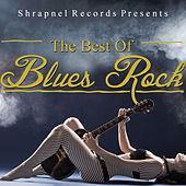 Shrapnel Records Presents: The Best of Blues Rock de Various Artists