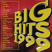 Big Hits 1999 van Various Artists