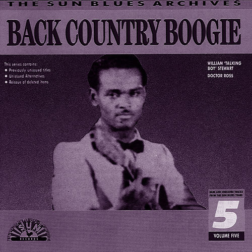 Back Country Boogie Vol. 2 by Dr. Isaiah Ross
