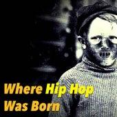 Where Hip Hop Was Born de Various Artists