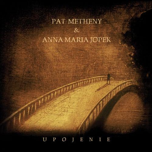 Upojenie by Pat Metheny