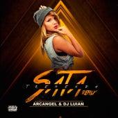 Tremenda Sata (Remix) de Arcangel