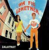 Ha fiú lehetnék by Sarolta Zalatnay