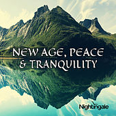 New Age, Peace & Tranquility by Various Artists
