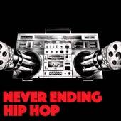 Never Ending Hip Hop de Various Artists