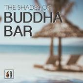 The Shades of Buddha Bar by Francesco Digilio