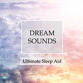 Dream Sounds Oasis - Ultimate Sleep Aid for Deep Lucid Dreams, Relaxation, Transcendental Meditation and Better Mental Health Through a Peaceful Ambience by Deep Sleep Music Academy