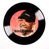 Singer Man In Dub by Beres Hammond