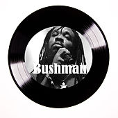 Yes Man by Bushman