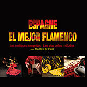 Espagne: El mejor flamenco (Les meilleurs interprètes, les meilleures mélodies) di Various Artists