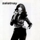 Zalatnay by Sarolta Zalatnay