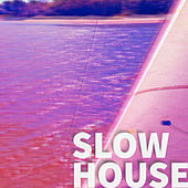 Slow House de Various Artists