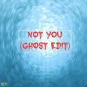 Not You (Ghost Edit) de Ghost