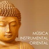 Música Instrumental Oriental - Musicas Calmas Orquestradas para Relaxar de Música Instrumental Maestro