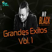 Grandes Éxitos, Vol. 1 de Mr Black