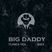 Big Daddy Tunes, Vol.024 von Various Artists