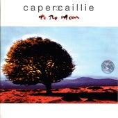 To The Moon de Capercaille