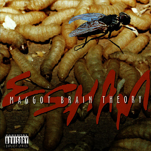 Maggot Brain Theory by Esham