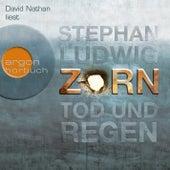 Zorn - Tod und Regen (Autorisierte Lesefassung) by Stephan Ludwig