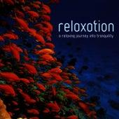 Relaxation by Crimson Ensemble