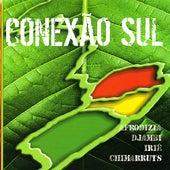 Conexão Sul von Various Artists
