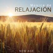 Musica de Relajacion de Various Artists
