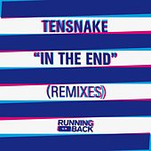 In The End (Remixes) by Tensnake