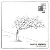 Woodland by Sascha Braemer