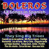 Boleros - 14 Songs in Spanish by Various Artists