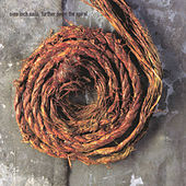 Further Down The Spiral by Nine Inch Nails